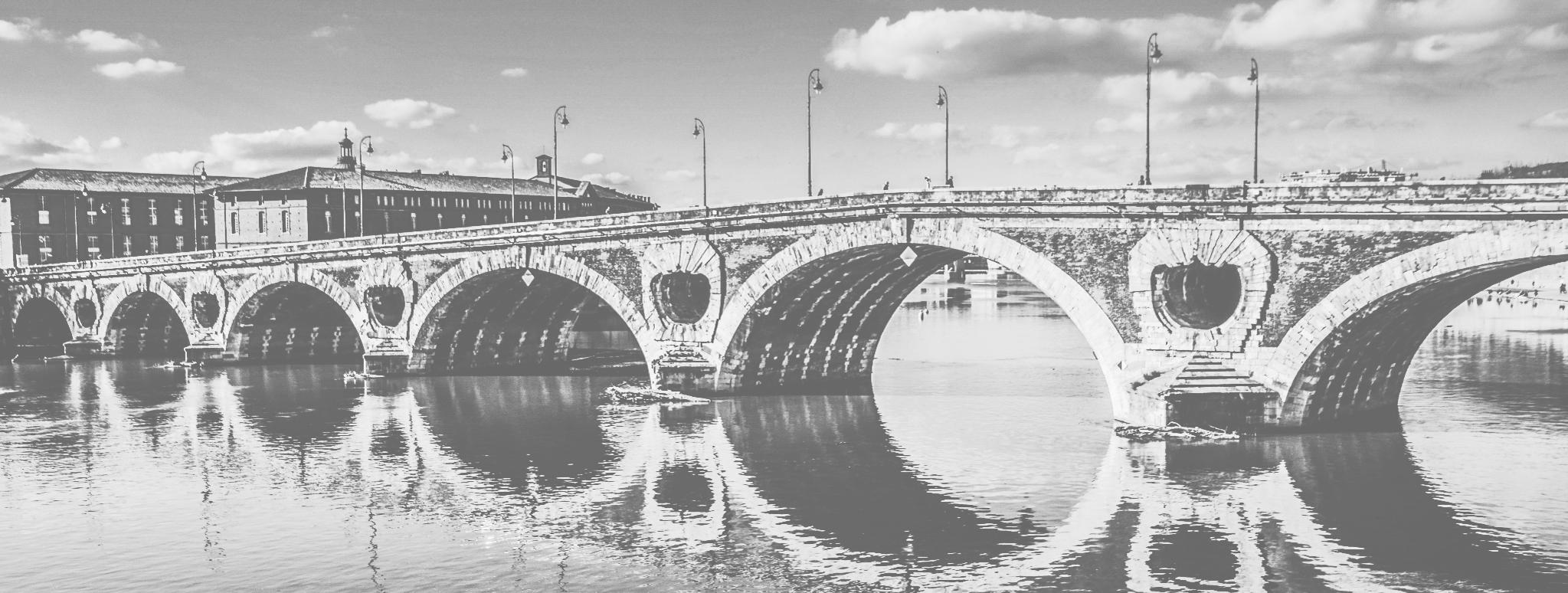 Coup de puce Expansion Toulouse